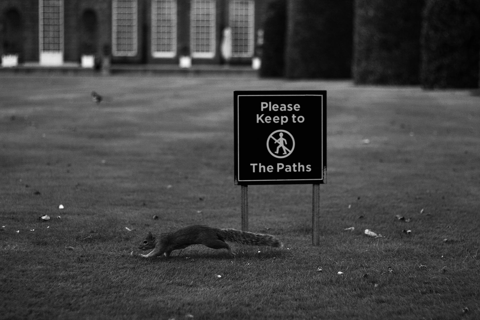 Martin Geisler Fotografie Photography Momente Menschen Tiere